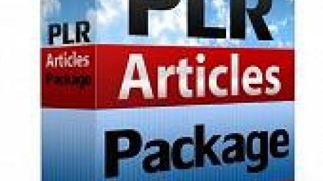 3 Cara Mengoptimalkan Blog Anda dengan PLR